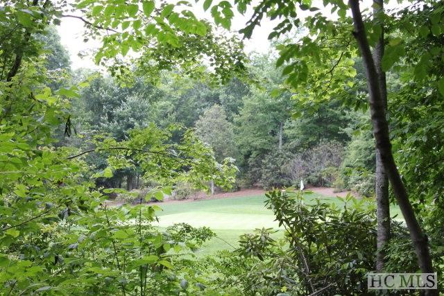 Lot N-20 Foxfire Road, Cashiers, NC 28717 (MLS #91289) :: Pat Allen Realty Group