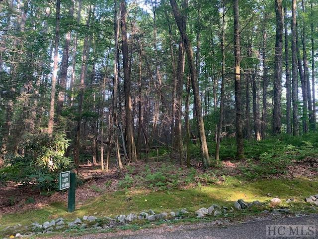 Lot 27 Timber Ridge Road, Cashiers, NC 28717 (MLS #91305) :: Berkshire Hathaway HomeServices Meadows Mountain Realty