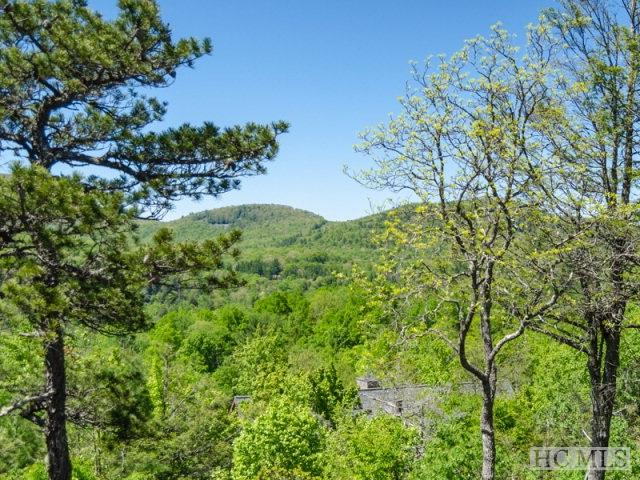 Lot 119 Garnet Rock Trail - Photo 1