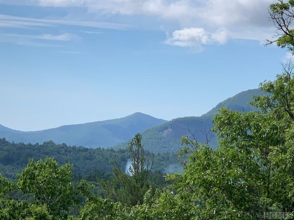 Lot 20 Piney Knob Trail - Photo 1