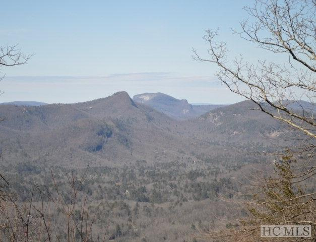26 W Whitetail Drive, Sapphire, NC 28774 (MLS #91484) :: Berkshire Hathaway HomeServices Meadows Mountain Realty