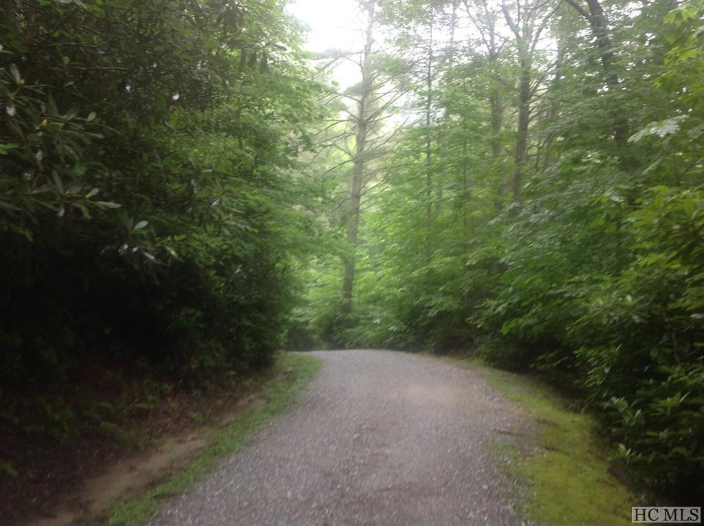 0 R U Lost Lane - Photo 1