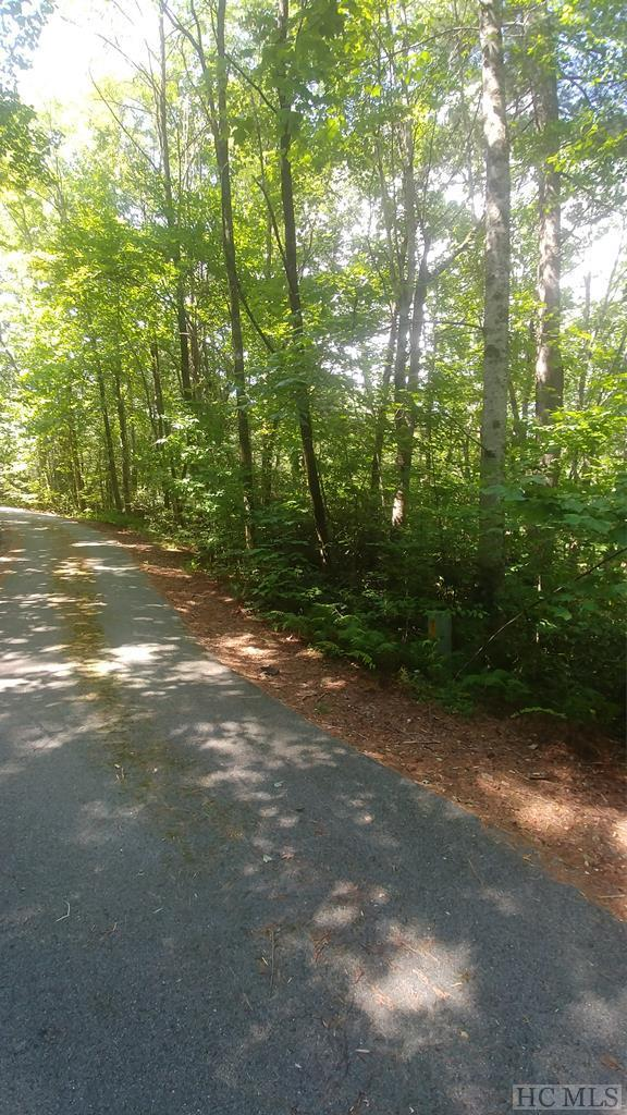 Lot 281 Pine Cone Court, Sapphire, NC 28774 (MLS #91694) :: Berkshire Hathaway HomeServices Meadows Mountain Realty