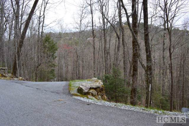 R-38 The Low Road, Cashiers, NC 28717 (MLS #91856) :: Pat Allen Realty Group