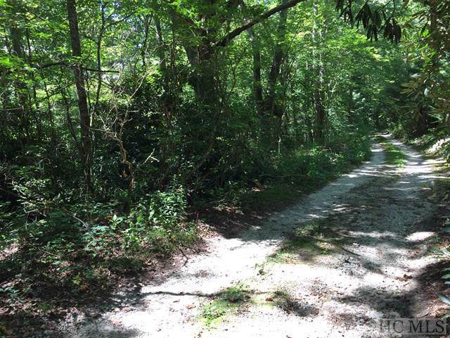 000 Pines Road, Scaly Mountain, NC 28775 (MLS #91907) :: Pat Allen Realty Group