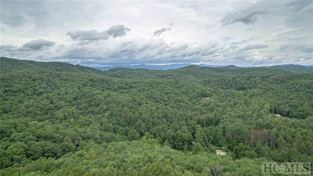 188 Robinson Drive, Lake Toxaway, NC 28747 (MLS #92085) :: Pat Allen Realty Group