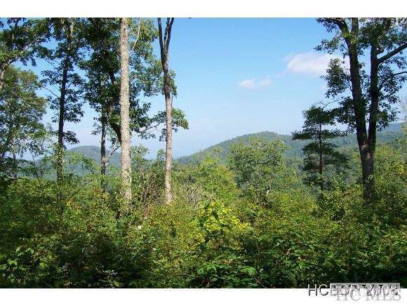 6 Cotswolds Way, Highlands, NC 28741 (MLS #92091) :: Pat Allen Realty Group