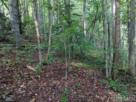 TBD Fenley Forest Road, Glenville, NC 28736 (MLS #92163) :: Pat Allen Realty Group