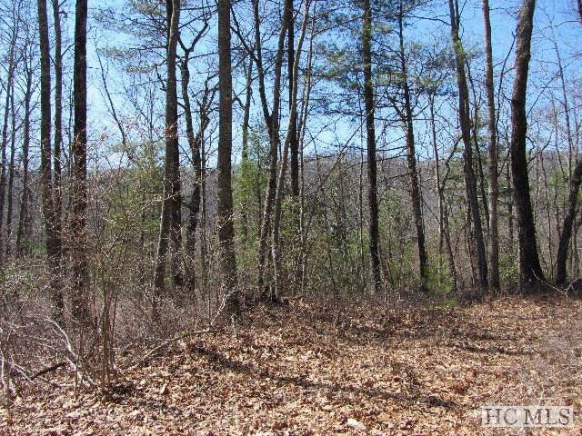Lot 79 Sarsaparilla Court, Sapphire, NC 28774 (MLS #92173) :: Berkshire Hathaway HomeServices Meadows Mountain Realty