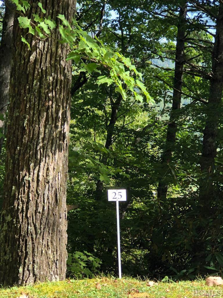 Lot 25 Rock Mountain Road - Photo 1