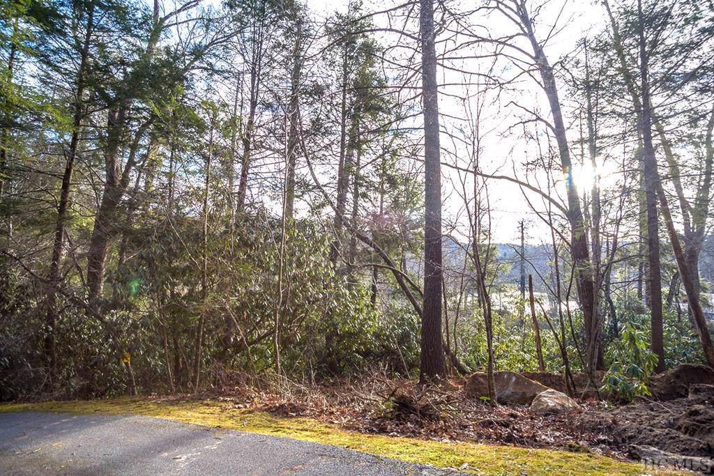 Lot 4 Ravenel Lake Trail - Photo 1