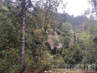 Lot F2 Gorge Trail Road, Cashiers, NC 28717 (MLS #92258) :: Berkshire Hathaway HomeServices Meadows Mountain Realty