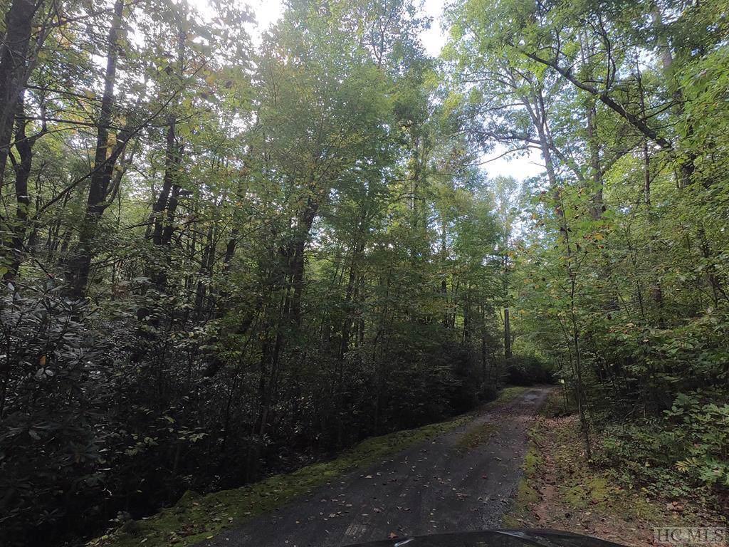 Lot 57 Pond View Lane - Photo 1