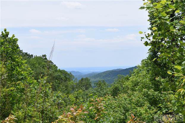 3 Pickens Highway, Rosman, NC 28772 (MLS #92409) :: Pat Allen Realty Group