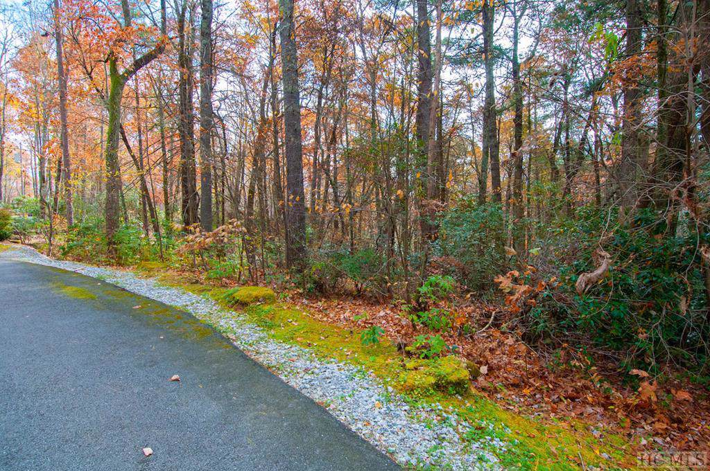 Lot 73 Forest Trail - Photo 1