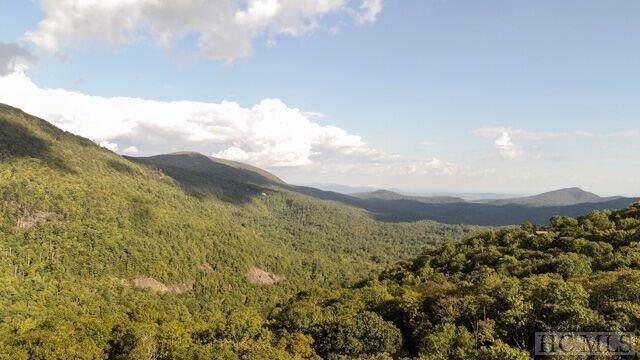 2 Frond Court, Sapphire, NC 28774 (MLS #92467) :: Berkshire Hathaway HomeServices Meadows Mountain Realty