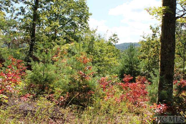 TBD Ell Ridge Drive, Glenville, NC 28736 (MLS #92473) :: Berkshire Hathaway HomeServices Meadows Mountain Realty