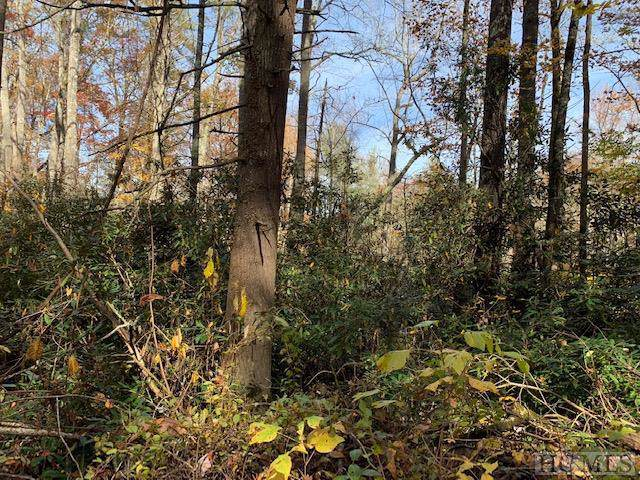 TR 3 Fenley Forest Trail, Cullowhee, NC 28723 (MLS #92524) :: Berkshire Hathaway HomeServices Meadows Mountain Realty