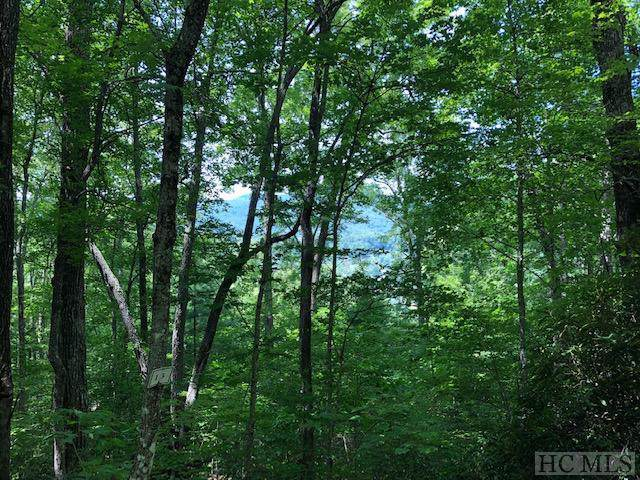 TBD Shephard's Gap, Cullowhee, NC 28723 (MLS #92604) :: Pat Allen Realty Group