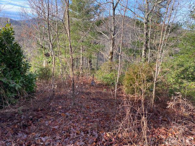 000 Channel View Drive, Cullowhee, NC 28723 (MLS #92718) :: Landmark Realty Group