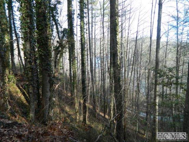 22-25 Wilderness Trail, Cullowhee, NC 28723 (MLS #92745) :: Pat Allen Realty Group