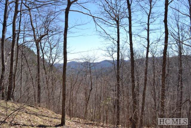 Lot 36 Continental Drive, Sapphire, NC 28774 (MLS #92747) :: Pat Allen Realty Group