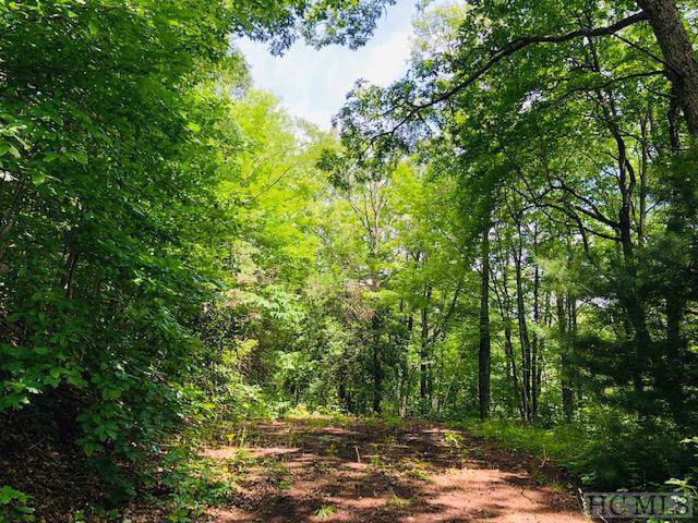 tbd Shoal Creek Road, Scaly Mountain, NC 28775 (MLS #92802) :: Pat Allen Realty Group