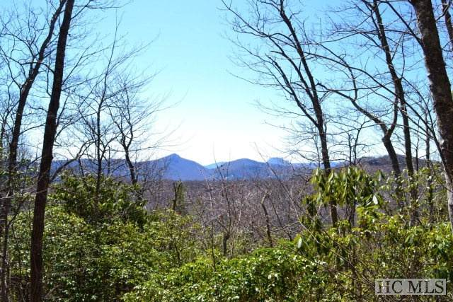 Lot 40 Continental Drive, Sapphire, NC 28774 (MLS #93018) :: Pat Allen Realty Group