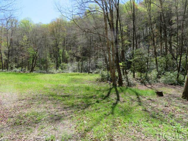 2 Moody Bridge Road, Tuckasegee, NC 28783 (MLS #93032) :: Berkshire Hathaway HomeServices Meadows Mountain Realty