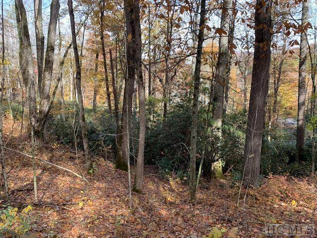 TR 1 & 2 Fenley Forest Trail, Cullowhee, NC 28717 (MLS #93443) :: Berkshire Hathaway HomeServices Meadows Mountain Realty