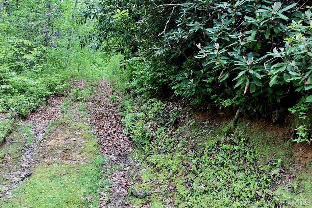 22 Woods Mountain Trail - Photo 1