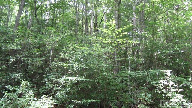 Lot B Scout Mountain Road, Cullowhee, NC 28723 (MLS #93762) :: Berkshire Hathaway HomeServices Meadows Mountain Realty