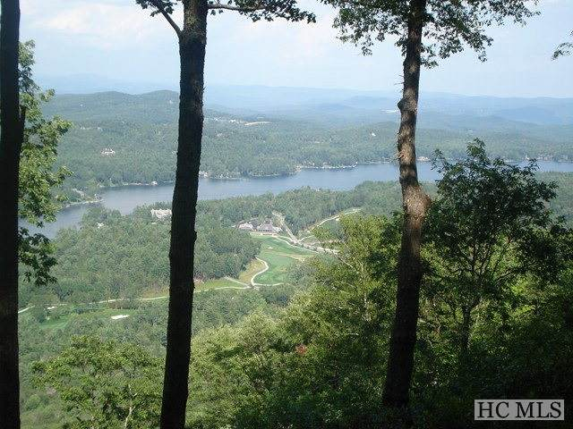 lot 20 Toxaway Cliff - Photo 1