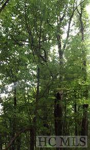 0 Shoal Creek Road, Scaly Mountain, NC 28775 (MLS #94181) :: Pat Allen Realty Group