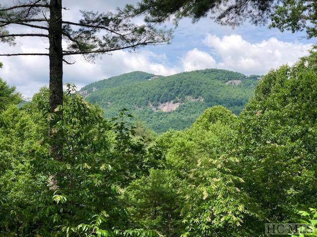 21 Emerald Crest Road #54, Cashiers, NC 28717 (MLS #94231) :: Pat Allen Realty Group