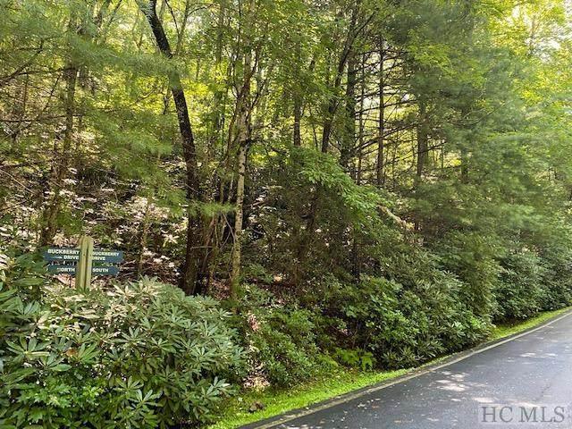 Lot 95 Buckberry Drive - Photo 1