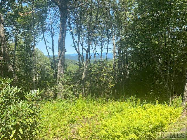 Lot B3 Sheer Rock Road, Glenville, NC 28736 (MLS #94627) :: Berkshire Hathaway HomeServices Meadows Mountain Realty