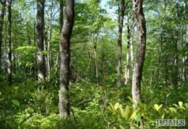 Lot 148 Sunrise Court, Sapphire, NC 28774 (MLS #94638) :: Berkshire Hathaway HomeServices Meadows Mountain Realty