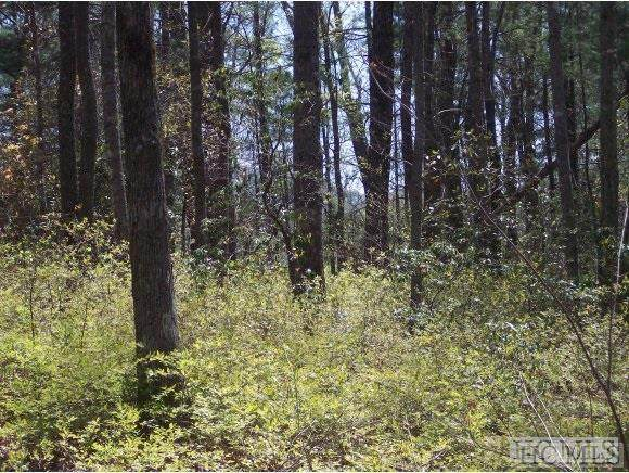 Lot 2REV Panther Ridge Road, Lake Toxaway, NC 28747 (MLS #94710) :: Pat Allen Realty Group