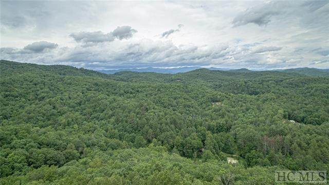 188 Robinson Drive, Lake Toxaway, NC 28747 (MLS #94774) :: Pat Allen Realty Group
