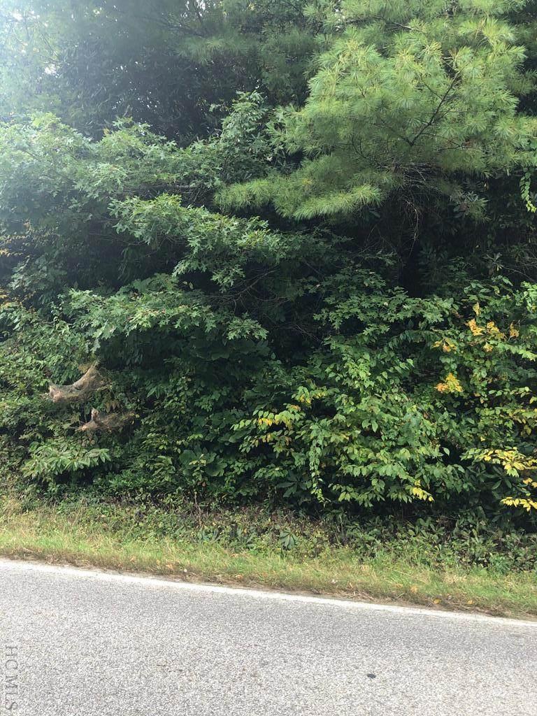 0 Hicks Road - Photo 1