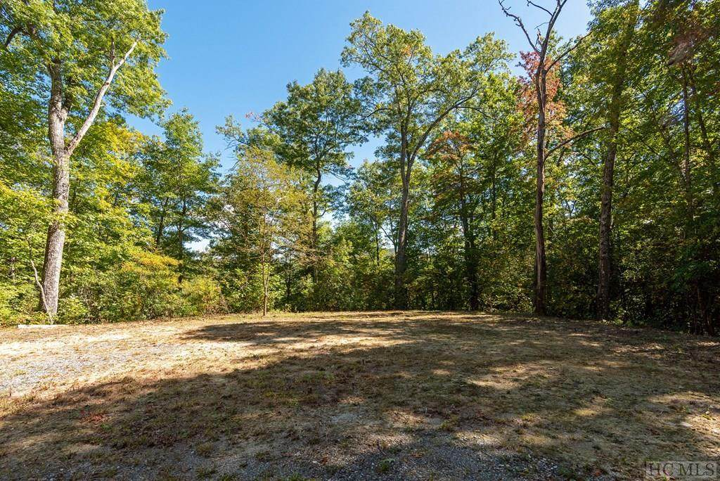 Lot 65A Hatcher Falls Road - Photo 1