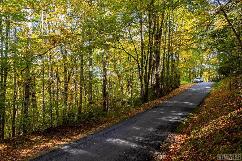 TBD Woods Mountain Trail - Photo 1