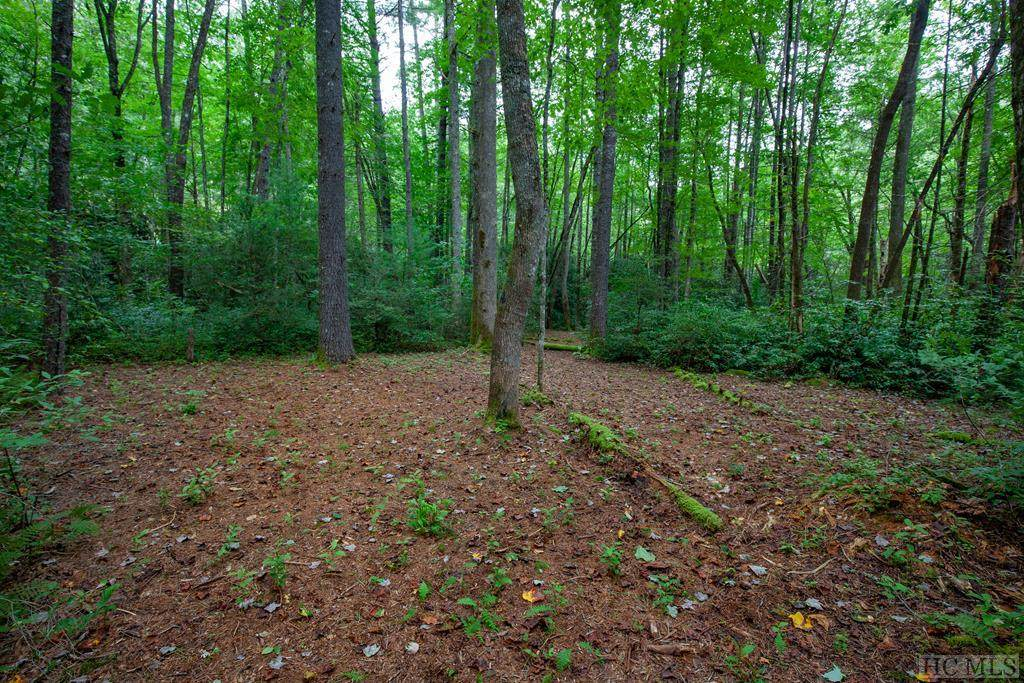 Lot 136 Lonesome Valley Rd - Photo 1