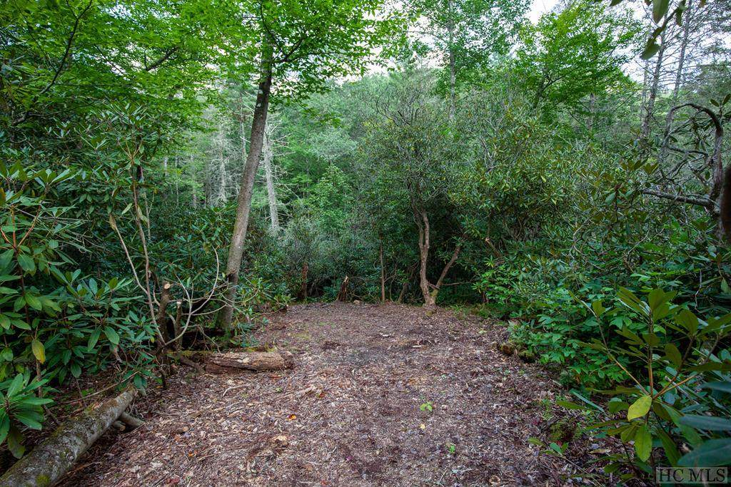 Lot 141 Lonesome Valley Rd - Photo 1