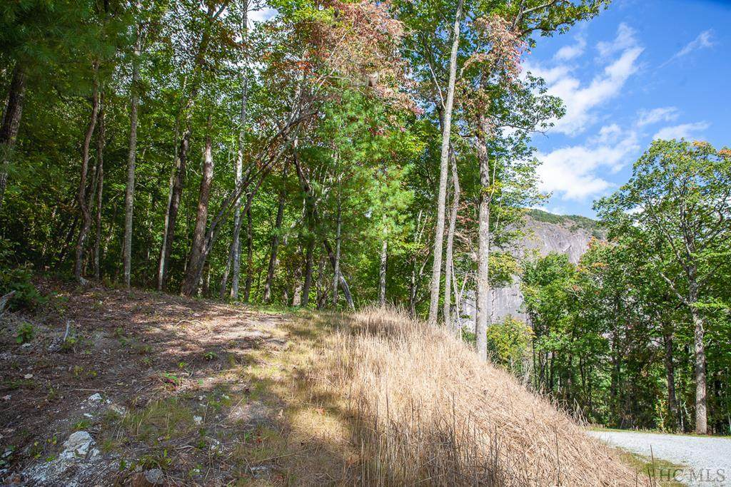 Lot 156 Lonesome Valley Rd - Photo 1