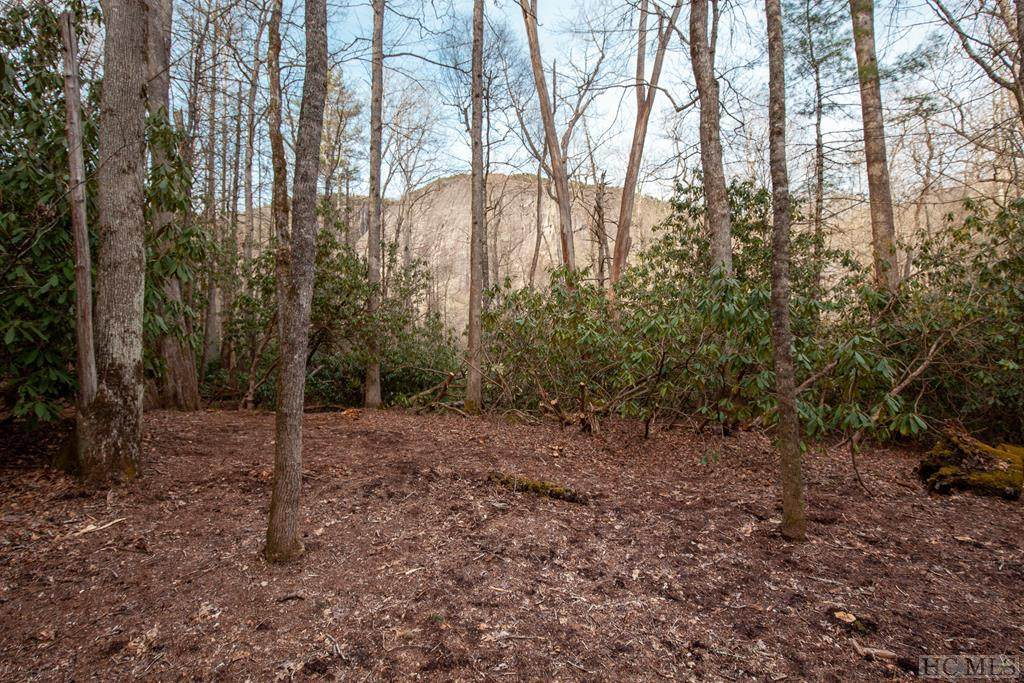Lot 55 Lonesome Valley Rd - Photo 1