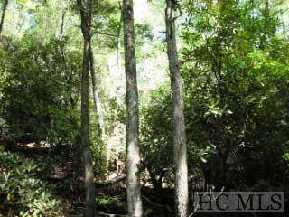 B3B Toll House Lane, Cashiers, NC 28717 (MLS #95075) :: Berkshire Hathaway HomeServices Meadows Mountain Realty