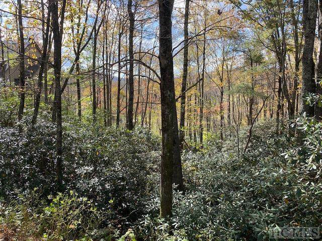 31 A&B Cullasaja Club Drive, Highlands, NC 28741 (MLS #95076) :: Berkshire Hathaway HomeServices Meadows Mountain Realty