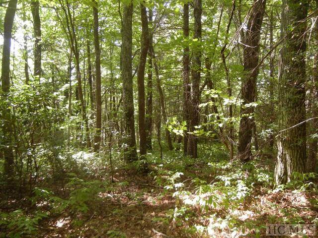 Lot R-43 Ox Lock Road, Cashiers, NC 28717 (MLS #95244) :: Berkshire Hathaway HomeServices Meadows Mountain Realty